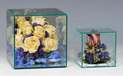 Glass Display Cases:  Glass Display Cubes