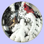 Late Snow Cardinals - Marc Hanson