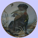 Decoy - John Ruthven - Sporting Dogs