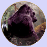 Diana Arts Fine Art and Collectibles-Grant Hacking-Young Silverback