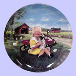 Country Friends Mini Plate - Donald Zolan - Giggles & Wiggles