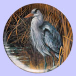 Blue Heron - Rosemary Millette