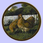 Rooster Plate - Trevor Swanson