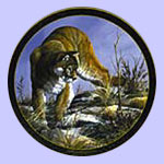 small and big cats plates