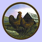 Rooster Plate - Trevor Swanson  - Kings of The Roost - Rhode Island Red